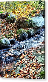 Stream In The Woods Acrylic Print by HD Connelly