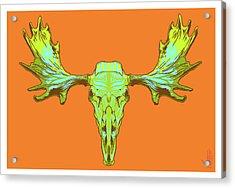 Sugar Moose Acrylic Print by Nelson Dedos Garcia