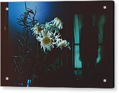 Suicide  Acrylic Print by Miro Trivunovic
