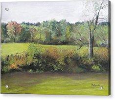 Summer Meadow Acrylic Print by Cindy Plutnicki