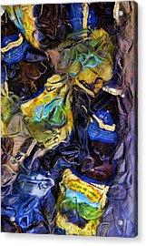Summerfest Acrylic Print by Steven Richardson