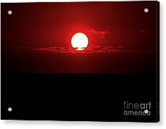 Sun Acrylic Print by Pravine Chester