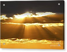 Sun Rays At Sunset Sky Acrylic Print by Elena Elisseeva