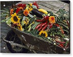 Sunflowers, Dahlias, Eggplants, Pepper Acrylic Print by Jonathan Blair