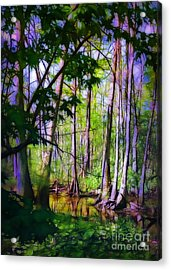 Sunlight In The Swamp Acrylic Print by Judi Bagwell
