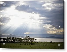 Sunlight Shines Down Through The Clouds Acrylic Print by David DuChemin