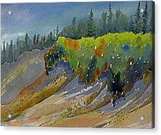 Sunlit Lichen Acrylic Print by Ramona Kraemer-Dobson