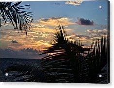 Sunrise Through Palms Acrylic Print by Ken  Collette