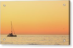 Sunset Cruise At Cape Town Acrylic Print by Tony Hawthorne