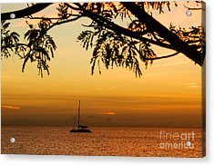 Sunset Sail Acrylic Print by Rene Triay Photography