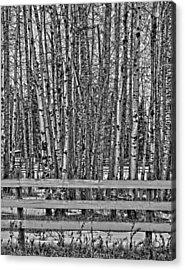 Susys Ranch  Acrylic Print by Jerry Cordeiro