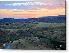 Sweet So Cal Sunset Acrylic Print by Lynn Bauer