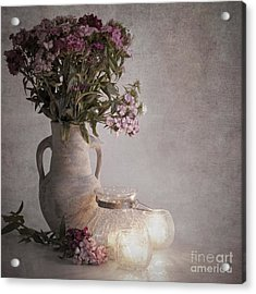 Sweet Williams Vintage Acrylic Print by Jane Rix