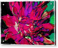 Swirly Fabric Flower Acrylic Print by Judi Bagwell