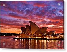 Sydney Operahouse Acrylic Print by Preston Coe
