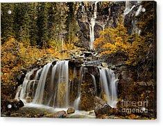 Tangle Falls, Jasper National Park Acrylic Print by Keith Kapple