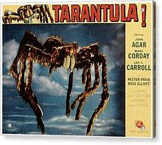 Tarantula, 1955 Acrylic Print by Everett