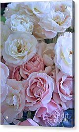 Tea Time Roses Acrylic Print by Carol Groenen
