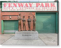 Teammates Acrylic Print by Clarence Holmes