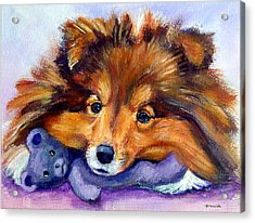 Teddy Bear Love - Shetland Sheepdog Acrylic Print by Lyn Cook