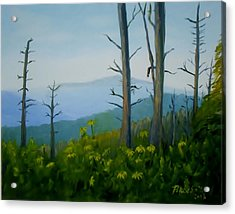 Tennessee Mts. Acrylic Print by Phebe Smith