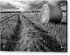 Texas Hill Country Hay Field Acrylic Print by Paul Huchton