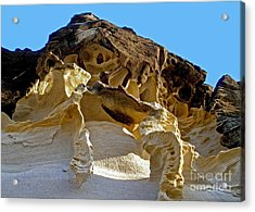 The Art Of Nature Acrylic Print by Kaye Menner