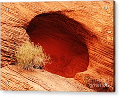 The Cave Acrylic Print by Vivian Christopher