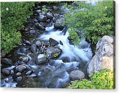 The Creek Acrylic Print by Nance Eakins