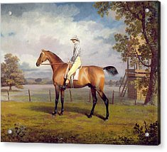 The Duke Of Hamilton's Disguise With Jockey Up Acrylic Print by George Garrard
