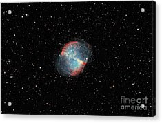 The Dumbbell Nebula Acrylic Print by Rolf Geissinger