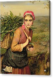 The Fern Gatherer Acrylic Print by Charles Sillem Lidderdale