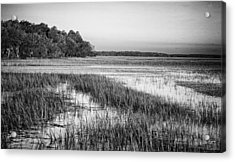 The Flats Acrylic Print by Phill Doherty