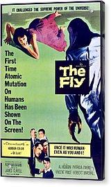 The Fly, Bottom Center, Clockwise Acrylic Print by Everett