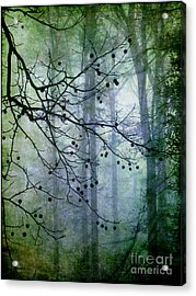 The Forest Cathedral Acrylic Print by Judi Bagwell