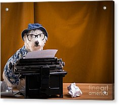 The Hard Boiled Journalist Acrylic Print by Edward Fielding
