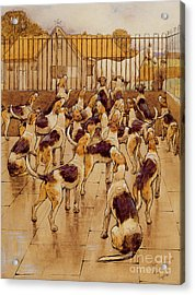 The Hounds Began Suddenly To Howl In Chorus  Acrylic Print by Cecil Charles Windsor Aldin