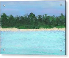 The Island Acrylic Print by Janet Palaggi