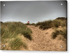 The Lifebelt 2 Acrylic Print by Steve Purnell