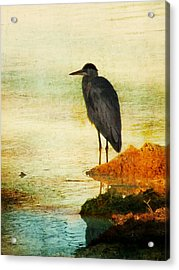 The Lonely Hunter Acrylic Print by Amy Tyler