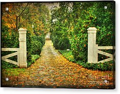 The Long Lonely Path Acrylic Print by Darren Fisher