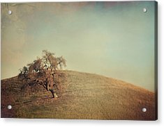 The Neverending Loneliness Acrylic Print by Laurie Search