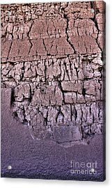 The Old Wall Acrylic Print by Adam Smith