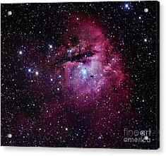 The Pacman Nebula Acrylic Print by Robert Gendler