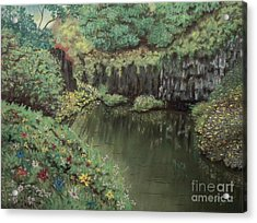 The Pond Acrylic Print by Jim Barber Hove