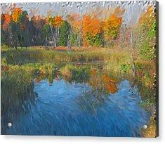 The Pond Next Door Acrylic Print by Mario Carini