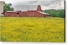 The Red Barn Acrylic Print by JC Findley