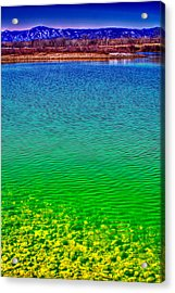 The Shallow End Of Eaglewatch Lake Acrylic Print by David Patterson