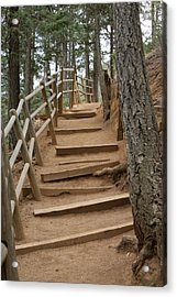 The Trail To The Top Acrylic Print by Ernie Echols