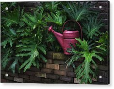 The Watering Can Acrylic Print by Brenda Bryant